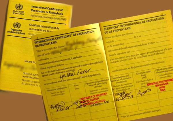 Yellow Fever Vaccination Immunisation Amp Certificate In