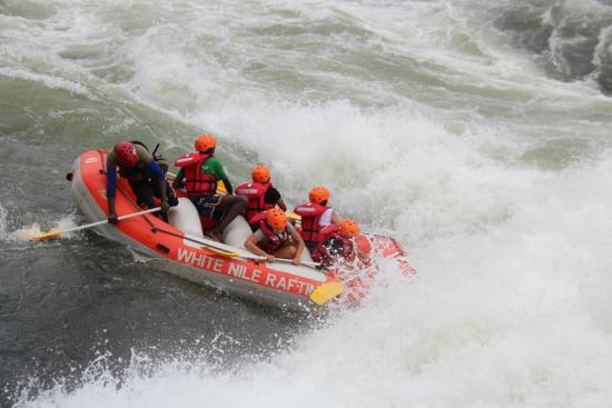 Uganda Safaris Review