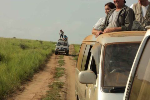 Best Uganda Safari Companies, Tours and Travel Operators