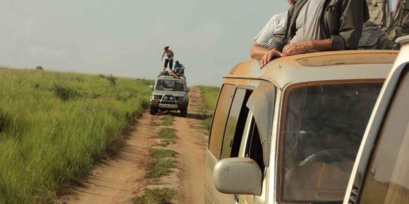 Safari Companies in Uganda