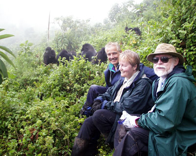 Uganda gorilla trekking review