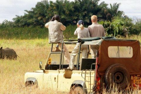 Uganda Safaris Review – Where to stay, Cost, Tours & Trips